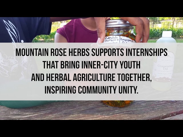 St. Louis Teens Dig Into Herbalism at Seeds of Hope Farm