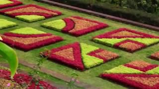 Madeira- Jardim Botanischer garten 2019