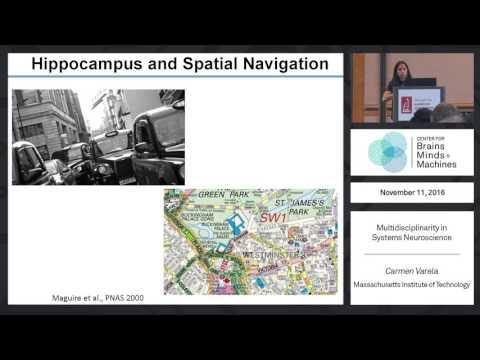 Multidisciplinarity in Systems Neuroscience