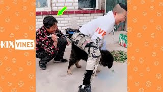 Funny videos 2019 ✦ Funny pranks try not to laugh challenge P109