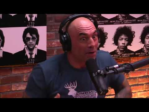 Dan Carlin And Joe Rogan Talk About The JFK Files And Assassination.