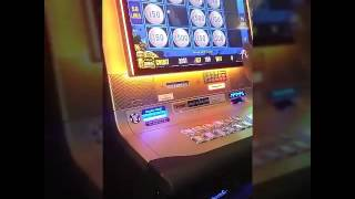 Lightning link pokie game BIG WIN Australian pokie machines
