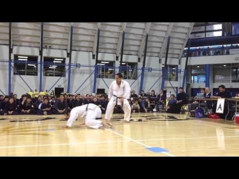 Nikkei Karate Rules!!! 2013