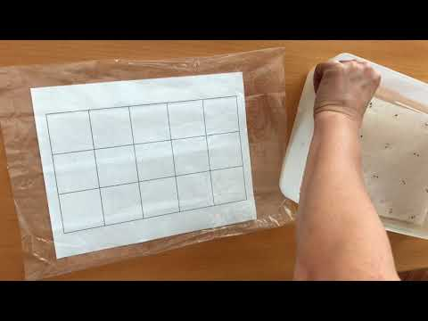 DIY Plantable Seed Sheet // Seed paper // Share Your Garden Wisdom
