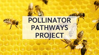 Pollinator Pathways Project