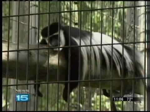 Fort Wayne zoo African Journey opens