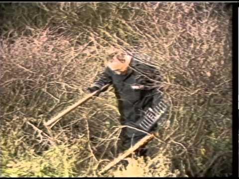 murder - SWIFT; JASON