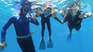 Naomi Klein at the Great Barrier Reef: what have we left for our children?