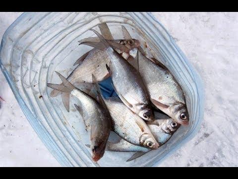 секреты рыбалки ловля подуста зимой на реке РСН - YouTube