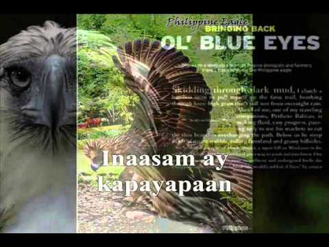 The Fraternal Order Of Eagles (Philippine Eagles) Hymn