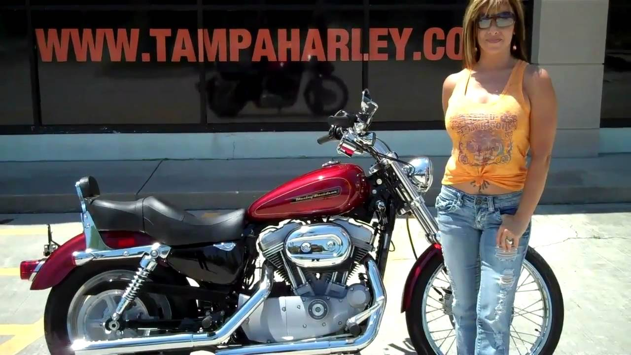 2009 sportster xl883c harley davidson custom for sale in tampa 2009 sportster xl883c harley davidson custom for sale in tampa florida usa sciox Gallery