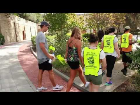 Los Angeles Ecotourism - Bikes and Hikes LA