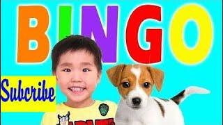 学习颜色和数字与娃娃和玩具儿童歌曲,歌曲,儿童歌曲