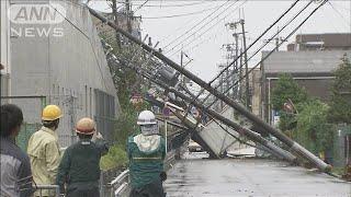 火災保険料値上げの見通し 自然災害相次ぎ支払い増(19/10/05)
