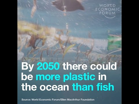 By 2050 there could be more plastic in the ocean than fish