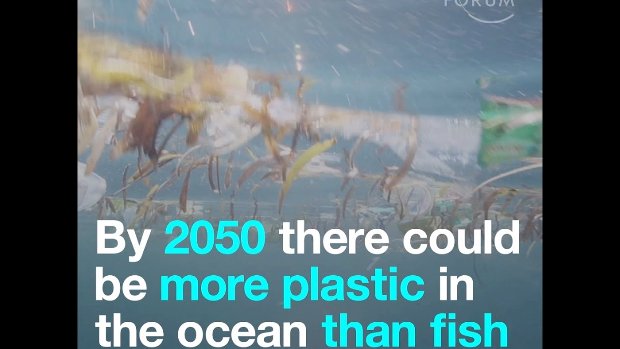 By 2050 There Could Be More Plastic In The Ocean Than Fish Youtube
