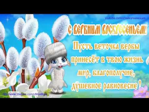 ZOOBE зайка Самое Лучшее Поздравление с Вербным Воскресеньем - Познавательные и прикольные видеоролики