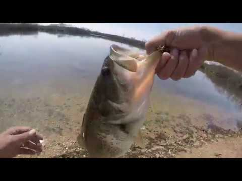 2017 Spring Fishing In Plainfield, Illinois