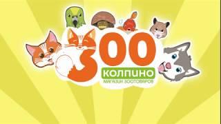 """""""ЗОО-Колпино"""" - магазин товаров для животных в г. Колпино"""
