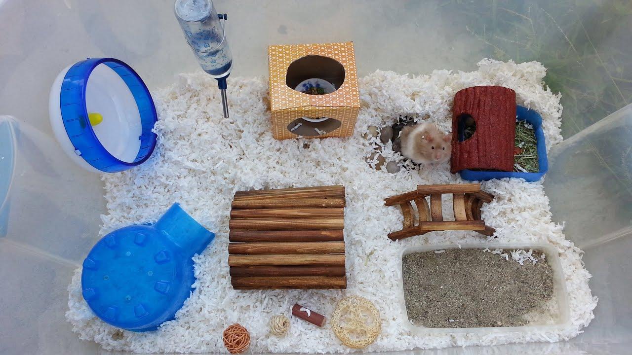 syrian teddy bear hamster cage tour april 2015 youtube. Black Bedroom Furniture Sets. Home Design Ideas
