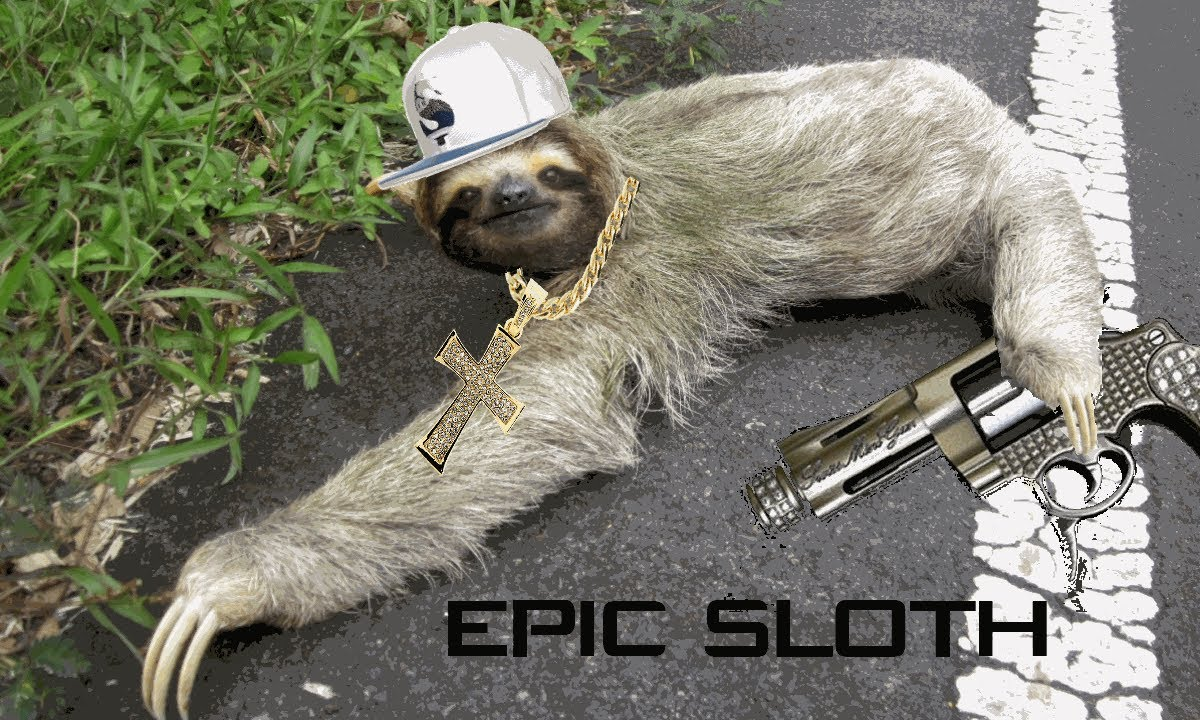 additional sos sloth video youtube