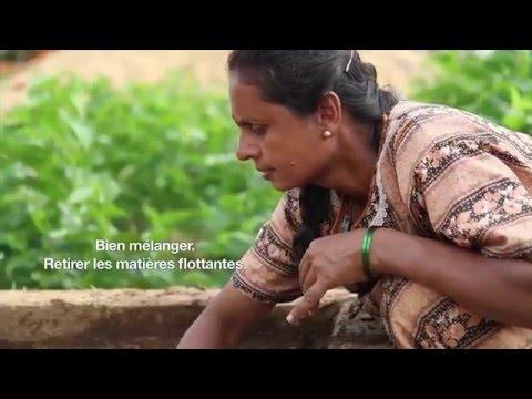 Biogaz & Compost