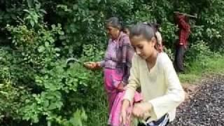 Congé solidaire au Népal