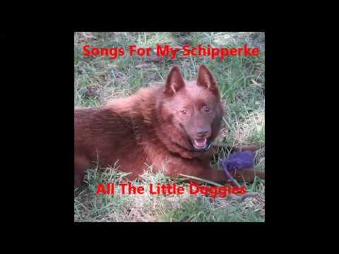Songs For My Schipperke: All The Little Doggies