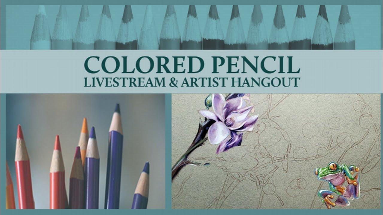 Colored Pencil Live & Artist Hangout - Drawing Birds