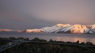 Fishing Adventures Norway (halibut) Ловля палтуса в Норвегии(Рыбалка в Норвегии Торсваг, палтус, треска, halibut norway torsvaag север норвегии ловля палтуса рыболовные трофеи..., 2012-05-20T18:00:12.000Z)