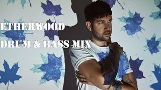 etherwood drum bass mix hospital records med school