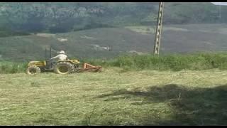 Cortando hierba