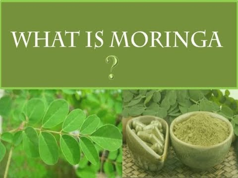What is Moringa and what are its benefits - A review