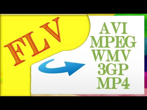 How To Convert FLV To AVI, MPEG, WMV, 3GP, MP4, MP3 And More !