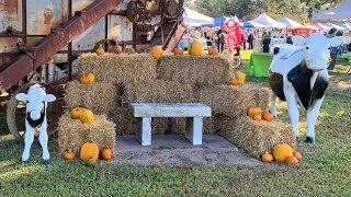 Harvest Festival 2019 at Chippokes Plantation State Park