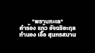 พรานทะเล (คาราโอเกะ) - ครรชิต