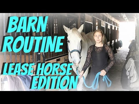 BARN ROUTINE LEASE HORSE EDITION! Day 283 (10/12/17)