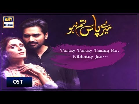 meray-paas-tum-ho-|-ost-🎵with-lyrics|-singer:-rahat-fateh-ali-khan-|-ary-digital-drama