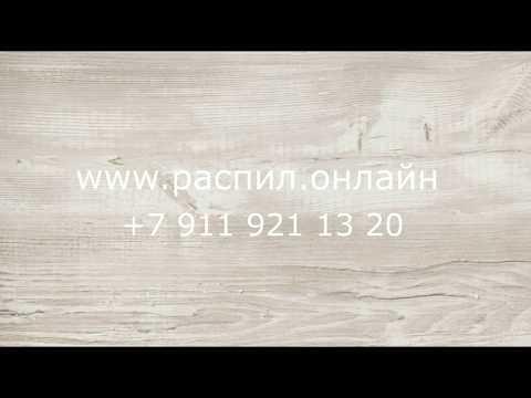 H 1401 Сосна Касцина