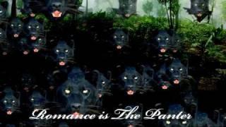 Catnip - Romance is the Panter