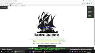 piratebays download knaben