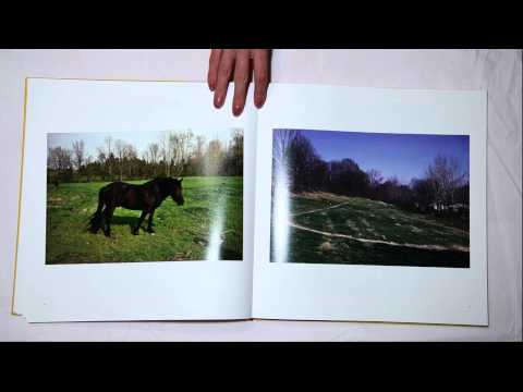 Mark Feeney: Four Photographers on Three Wheels: William Egglestons Tricycle and Before