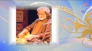 Jhap Taal Guitar - Pt. Vishwa Mohan Bhatt - Indian Classical Instrumental