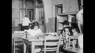 Library Organization - 1951 - CharlieDeanArchives / Archival Footage