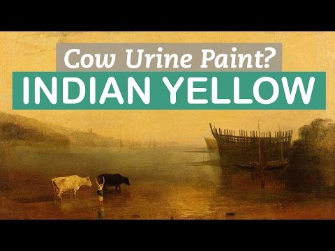 Paint made of Cow Urine? Indian Yellow | LittleArtTalks