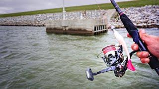 Jigging BIG SWIMBAITS For GIANT Flathead Catfish Surprising