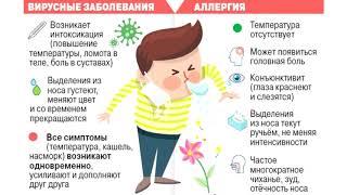 Мифы об аллергии (рассказывает Алексей Яковлев)