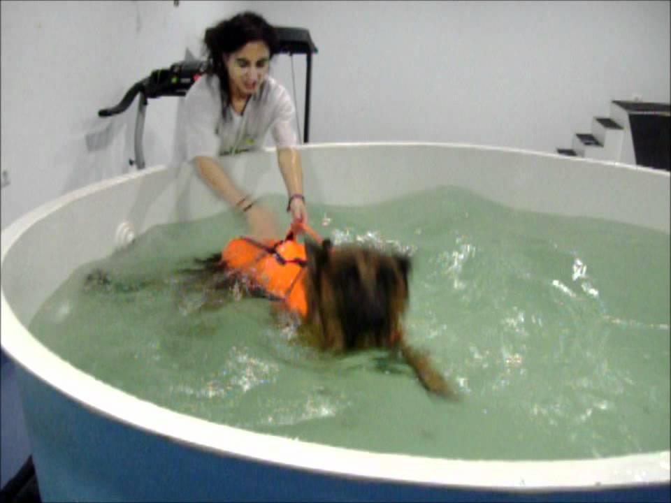Sesi n de rehabilitacion de youtube for Rehabilitacion en piscina