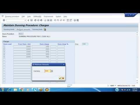 DUNNING PROCEDURE IN SAP-FI