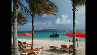 "2019 Jost Van Dyke, White Bay, British Virgin Islands ""Feeling Desire"""